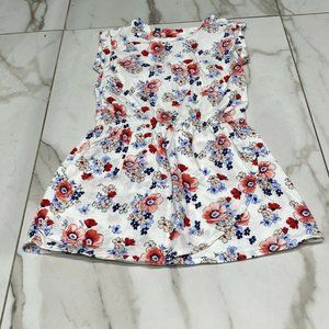 Baby Gap White Red Pink Blue Flower Floral Dress